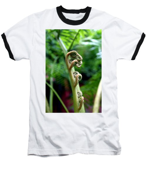 Birth Of A Fern Baseball T-Shirt