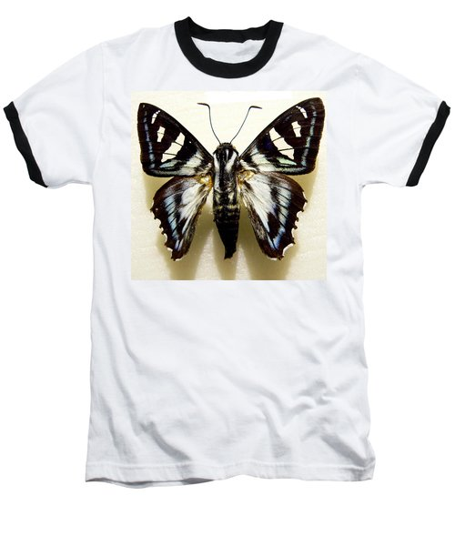 Baseball T-Shirt featuring the photograph Black And White Moth by Rosalie Scanlon