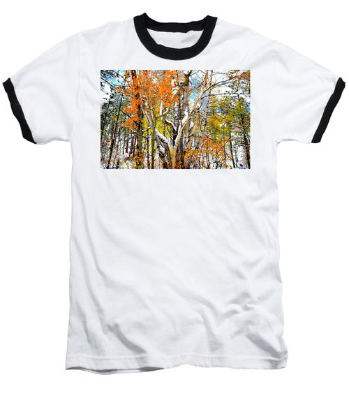 Black Hills Entanglement Baseball T-Shirt by Clarice  Lakota