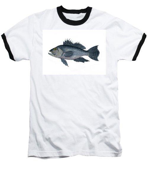 Black Sea Bass 3 Baseball T-Shirt