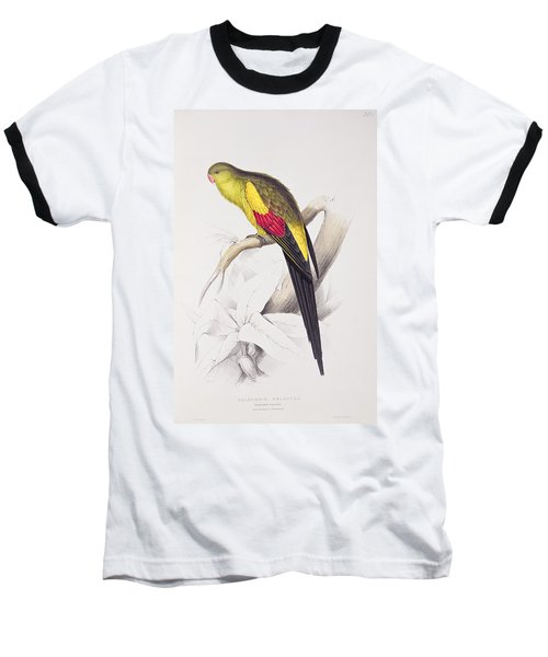 Black Tailed Parakeet Baseball T-Shirt