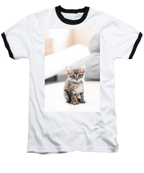 Blue Eyed Kitten Baseball T-Shirt by Shelby  Young