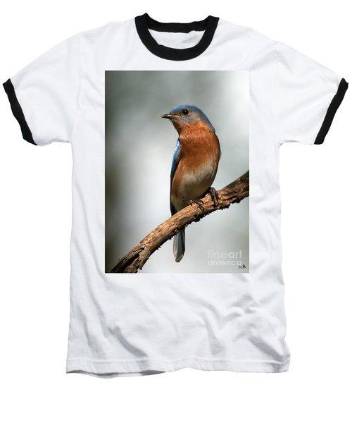 Bluebird- I See You Baseball T-Shirt