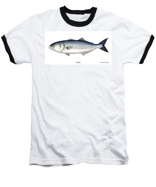 Bluefish Baseball T-Shirt by Charles Harden