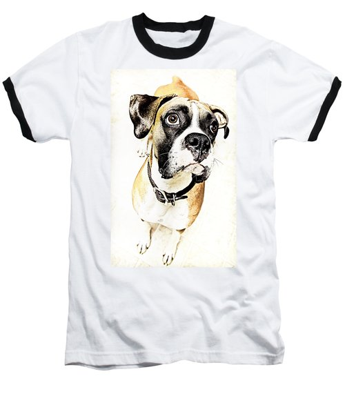 Baseball T-Shirt featuring the photograph Boxer Dog Poster by Peter v Quenter