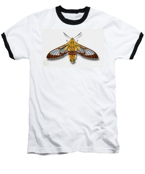 Broad-bordered Bee Hawk Moth Butterfly - Hemaris Fuciformis Naturalistic Painting -nettersheim Eifel Baseball T-Shirt