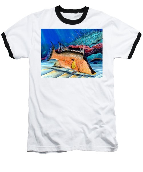Bull Hogfish Baseball T-Shirt