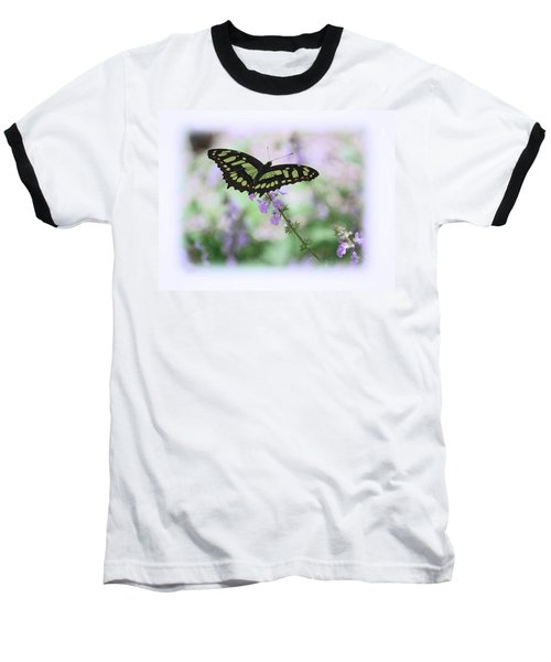 Baseball T-Shirt featuring the photograph Butterfly 8 by Leticia Latocki