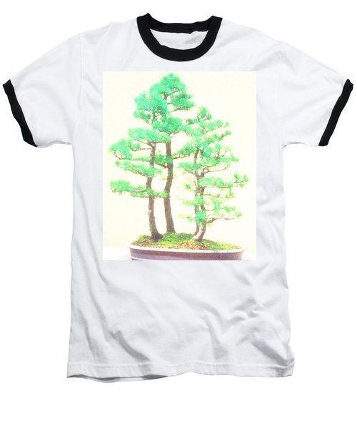 Caitlin Elm Bonsai Tree Baseball T-Shirt by Marian Cates