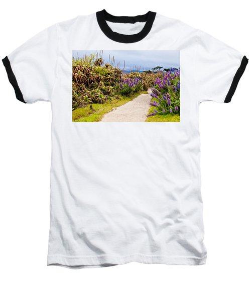 California Coastline Path Baseball T-Shirt by Melinda Ledsome