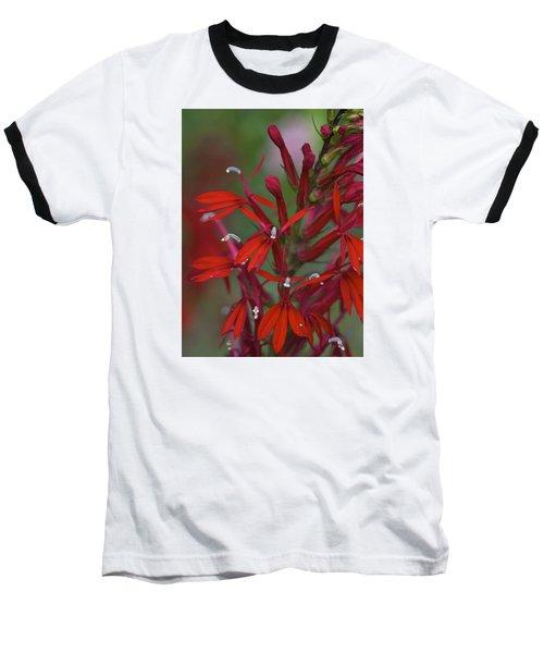 Cardinal Flower Baseball T-Shirt by Jane Eleanor Nicholas