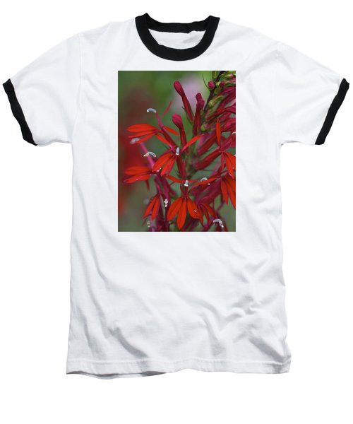 Cardinal Flower Baseball T-Shirt
