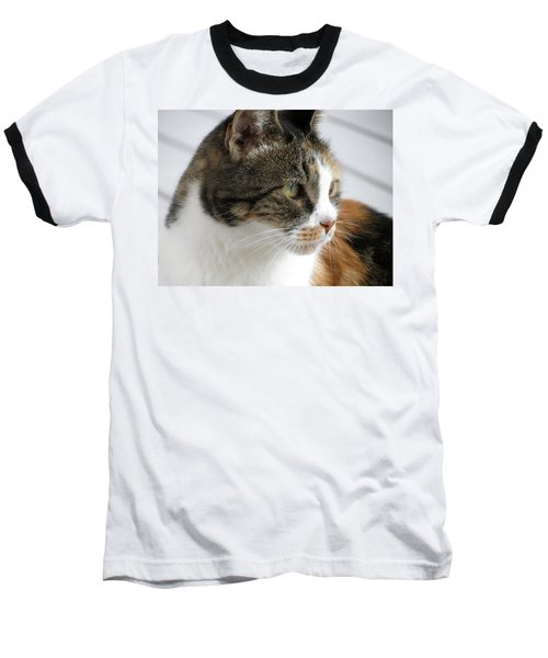 Baseball T-Shirt featuring the photograph Cat by Laurel Powell