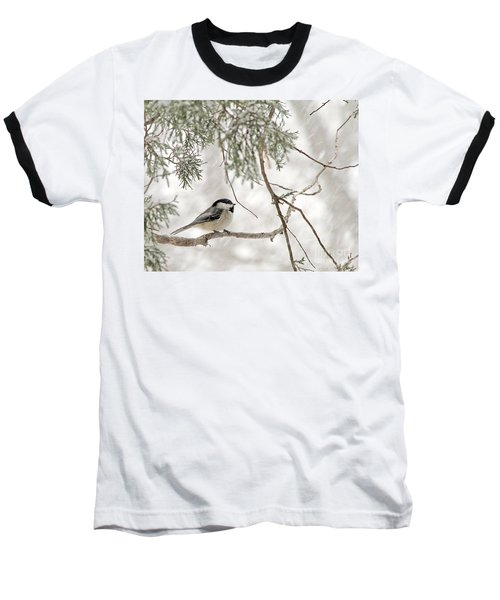 Baseball T-Shirt featuring the photograph Chickadee In Snowstorm by Paula Guttilla