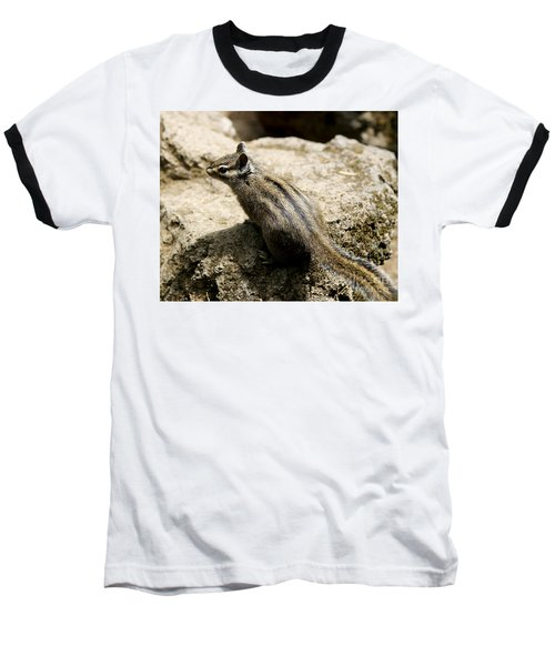 Baseball T-Shirt featuring the photograph Chipmunk On A Rock by Belinda Greb