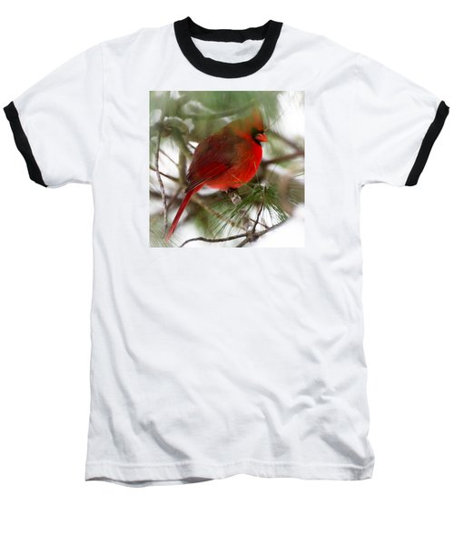 Baseball T-Shirt featuring the photograph Christmas Cardinal by Kerri Farley