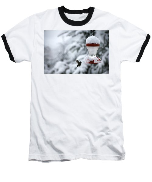 Christmas Hummingbird Baseball T-Shirt