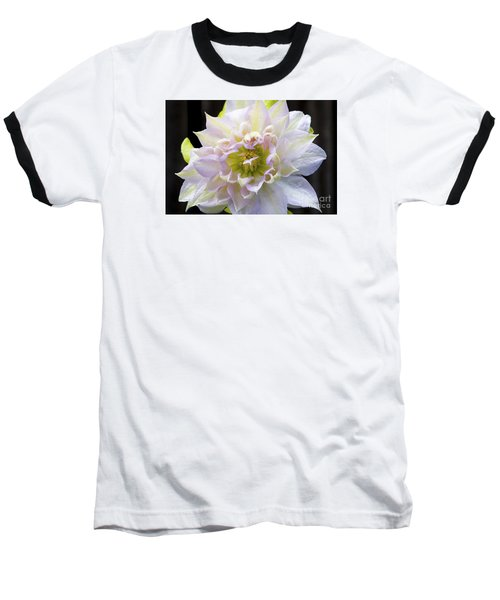 Clematis 'belle Of Woking' Baseball T-Shirt