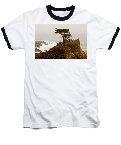 Coastline Cypress Baseball T-Shirt by Melinda Ledsome