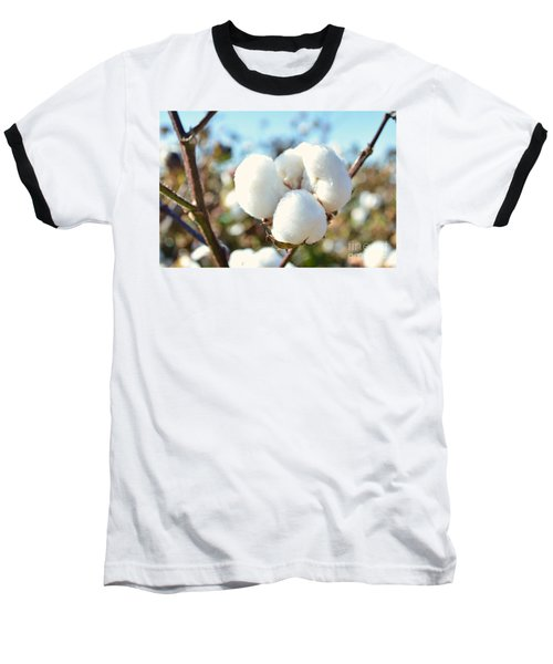 Cotton Boll Iv Baseball T-Shirt