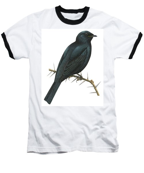 Cuckoo Shrike Baseball T-Shirt