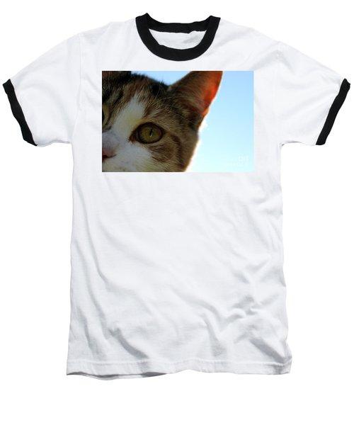 Curious Cat Baseball T-Shirt