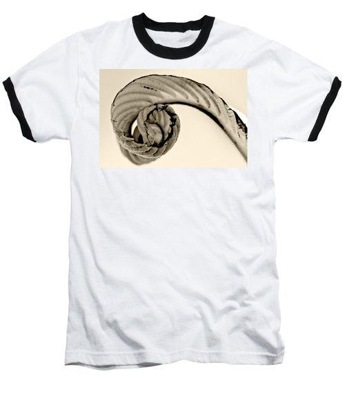 Curled Baseball T-Shirt by Melinda Ledsome