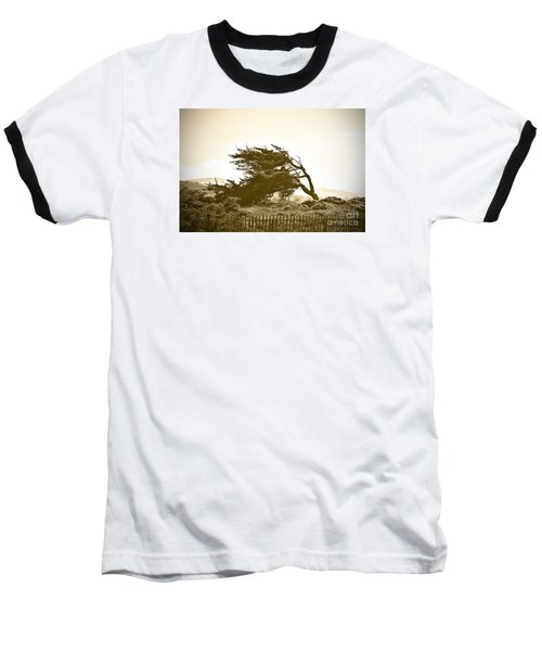Baseball T-Shirt featuring the photograph Cypress Trees In Monterey by Artist and Photographer Laura Wrede