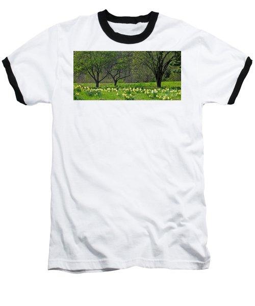 Daffodil Meadow Baseball T-Shirt by Ann Horn