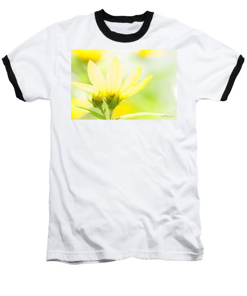 Daisies In The Sun Baseball T-Shirt