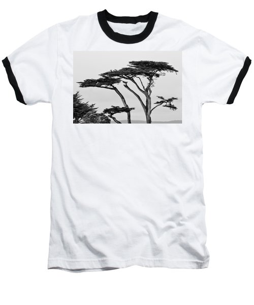 Dark Cypress Baseball T-Shirt