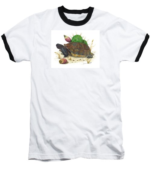 Desert Tortoise Baseball T-Shirt by Cindy Hitchcock