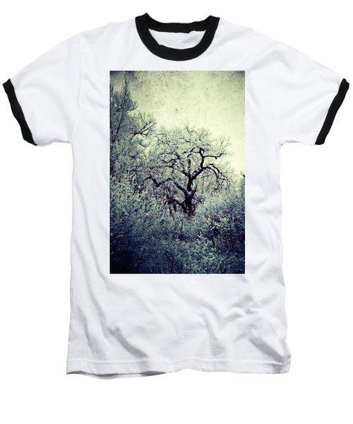 Destiny Baseball T-Shirt by Leanna Lomanski