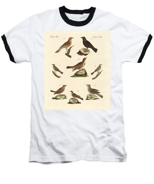 Different Kinds Of Larks Baseball T-Shirt