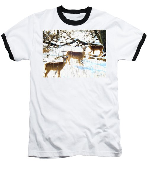 Does In The Snow Baseball T-Shirt