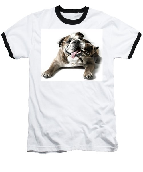 Baseball T-Shirt featuring the photograph Dog Mastiff by Evgeniy Lankin