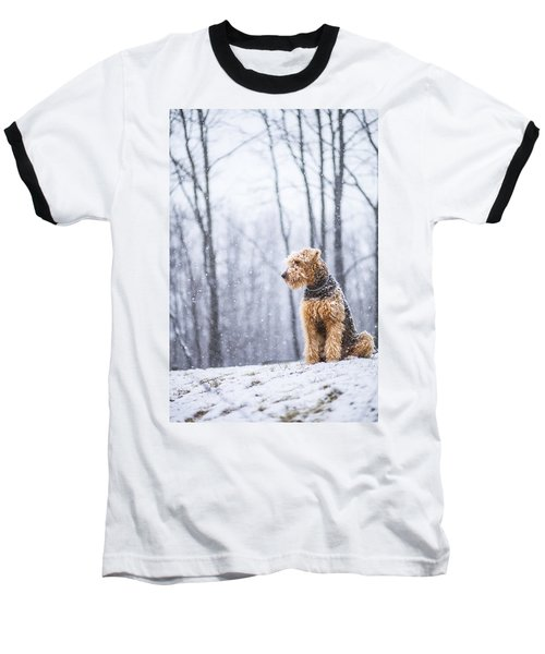 Dog Sits Under The Snowfall Baseball T-Shirt
