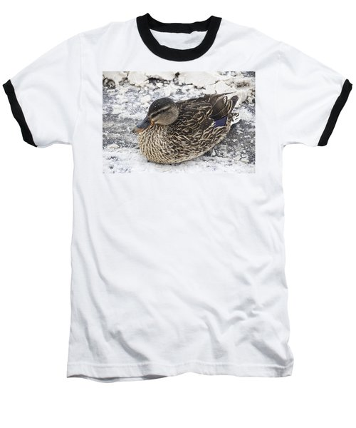 Duck Setting On A Winter Road Baseball T-Shirt