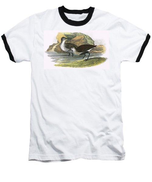 Dunlin Baseball T-Shirt