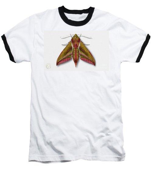Elephant Hawk Moth Butterfly - Deilephila Elpenor Naturalistic Painting - Nettersheim Eifel Baseball T-Shirt