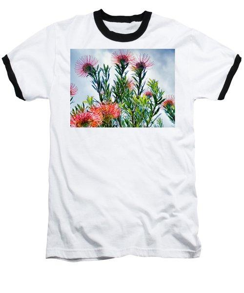 Enchanting Gardens 42 Baseball T-Shirt by Dawn Eshelman