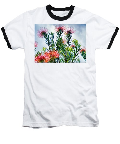 Enchanting Gardens 42 Baseball T-Shirt