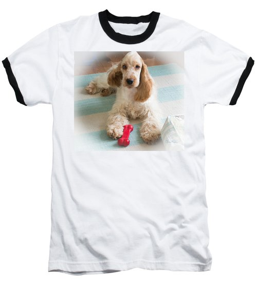English Cocker Spaniel - Orange Roan Color Baseball T-Shirt