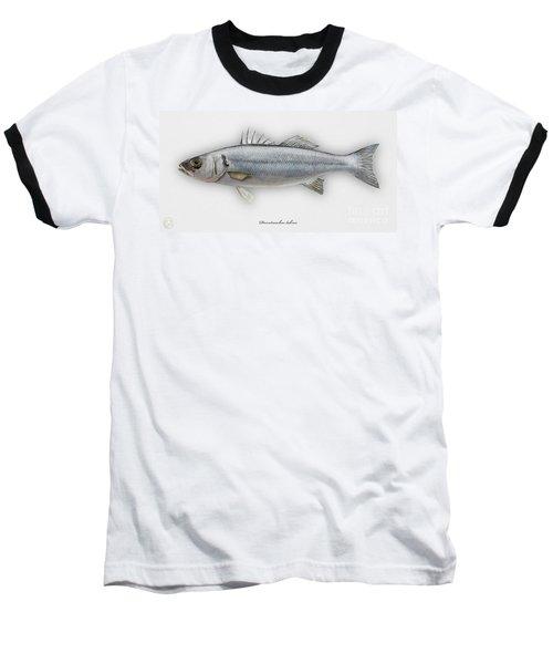 European Seabass Dicentrarchus Labrax - Bar Commun - Loup De Mer - Lubina - Havabor - Seafood Art Baseball T-Shirt