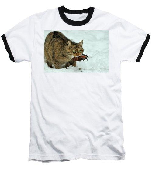 European Wildcat Baseball T-Shirt