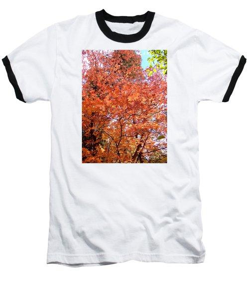 Fall Colors 6357 Baseball T-Shirt