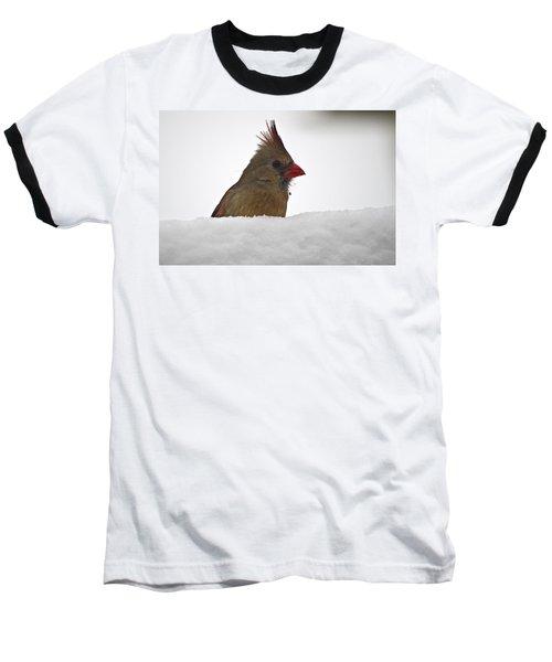 Snowy Peek-a-boo Baseball T-Shirt