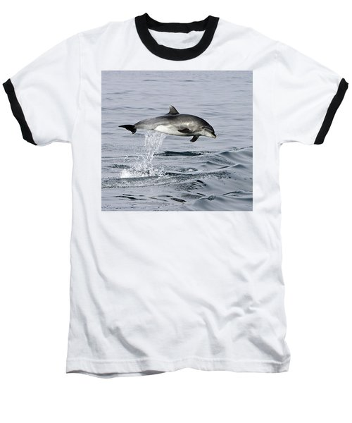 Flight Of The Dolphin Baseball T-Shirt by Shoal Hollingsworth