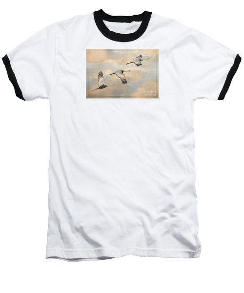 Fly Away Baseball T-Shirt by Alice Cahill