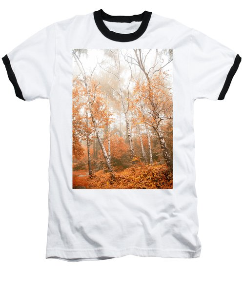 Foggy Autumn Aspens Baseball T-Shirt by Eti Reid